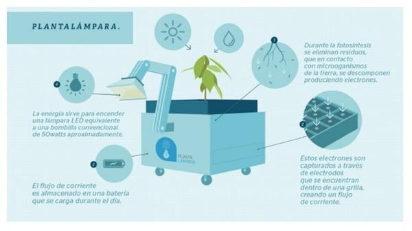 """El uso de """" plantalámparas """" en Nueva Saposoa permite a los adultos trabajar más horas al día, lo que repercute de forma directa en la mejora de su economía, al igual que en los estudios de los niños."""