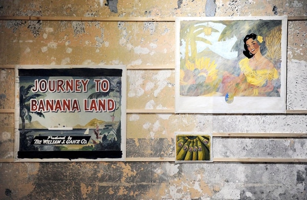 Barrios trabajó muchos años como diseñador publicitario. En su arte, emula segmentos de pósters de empresas bananeras,