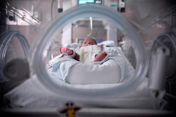 En el Hospital México, los bebés prematuros reciben cuidados con altas tecnologías que les permiten adaptarse a su entorno y mejorar su desarrollo mental y motor. Fotografía: Diana Méndez