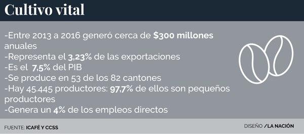 Impacto económico de la recolección de café