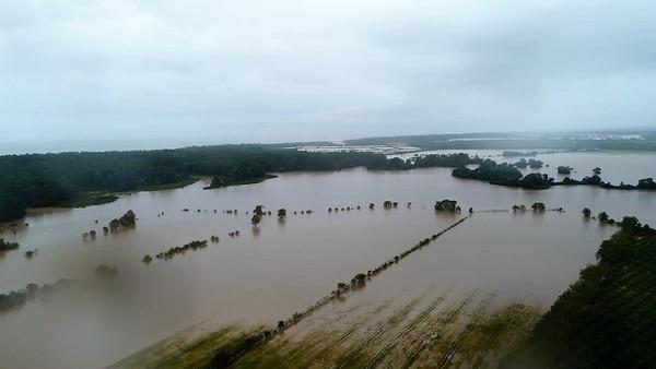En el sector de Barbudal, en Parrita, las plantaciones arroceras quedaron totalmente inundadas, este jueves, ante las fuertes lluvias causadas por el tormenta tropical Nate.
