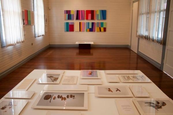 'Efecto borde' tiene fotografías, documentos y pinturas que se vinculan con material botánico auténtico.