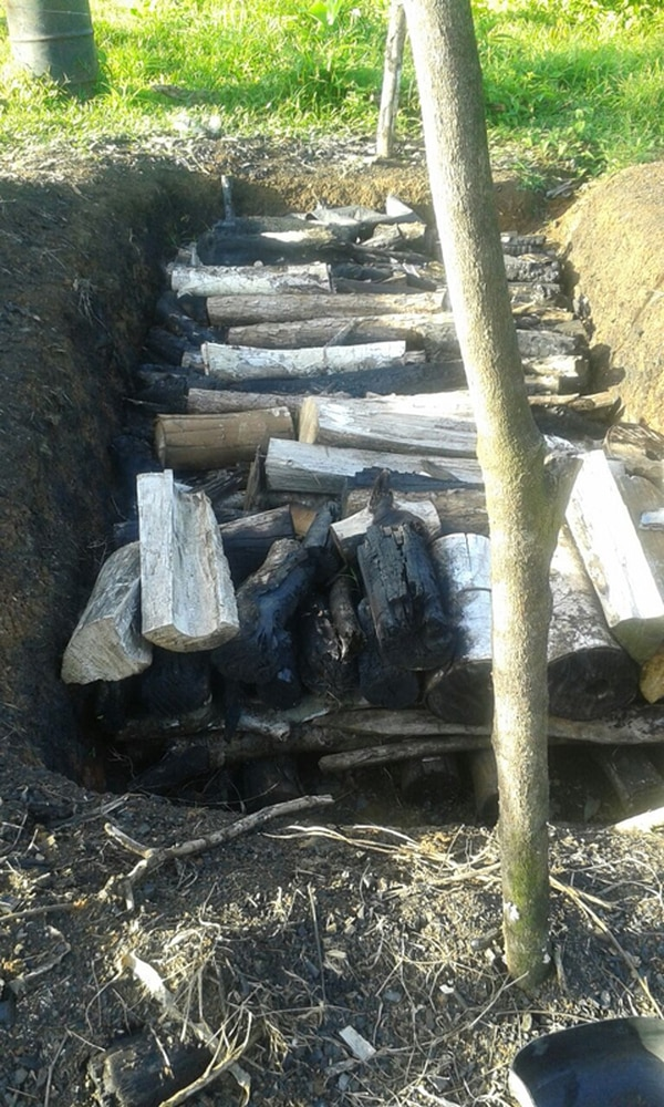 En el lugar había una fosa con tucas de madera.   MSP PARA LA NACIÓN