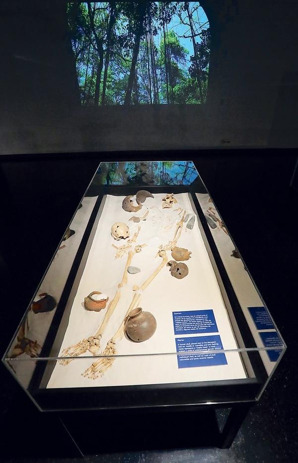 La exposición recrea el enterramiento de quien fuera un guerrero. Entre las ofrendas fúnebres se observan hachas, una mandíbula que pudo formar parte de un penacho y un cráneo que pudo ser un trofeo.   JOHN DURÁN