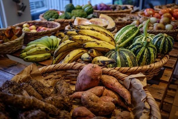Costa Rica produce gran variedad de productos certificados como orgánicos, pero la mayoría se destina al mercado interno y las exportaciones se concentran en unos pocos.