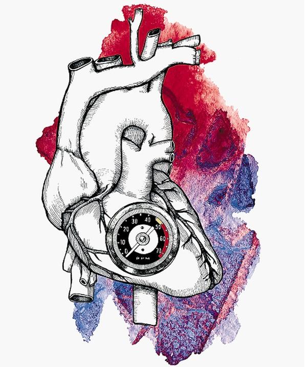 Ilustración por Leonor Parra