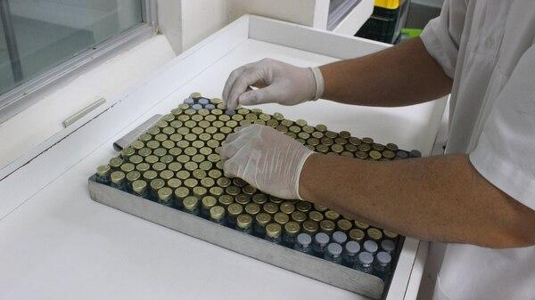 El Instituto Clodomiro Picado de la Universidad de Costa Rica (ICP-UCR) trabaja en el desarrollo de sueros para pacientes graves de covid-19.