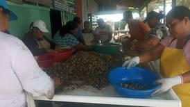 Veda de tres meses a pesca en Golfo de Nicoya protegerá reproducción de especies comerciales