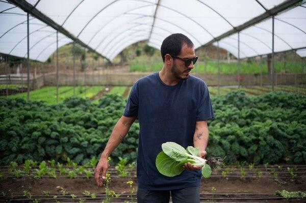 5/4/2017. Curridabat, Finca Al Mercat. Retrato de Jose Gonzales, chef y dueño del restaurante Al Mercat. foto jeffrey zamora