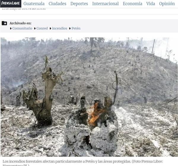 La mayoría de incendios tiene lugar en el departamento de Petén, norte de Guatemala./Prensa Libre, Guatemala