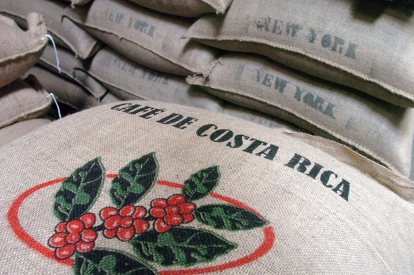 La fuerte baja en los precios del café se refleja en los ingresos que dejan las exportaciones de este producto. A noviembre del 2013 las ventas bajaron un 25,5% con respecto a igual período del 2012. | ARCHIVO