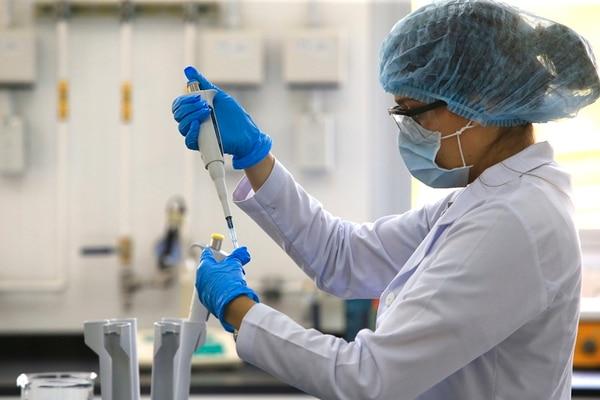 ITCR mejorará cultivo de piel y plantas medicinales