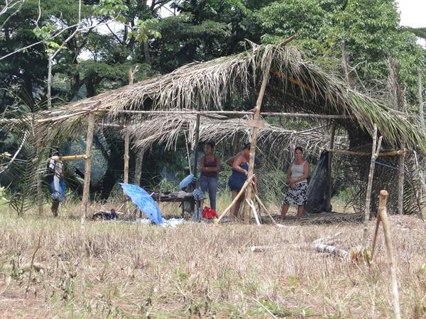 Con materiales que extrajeron de la finca, como palma y bambú, los precaristas levantaron ranchos.   FREDDY PARRALES