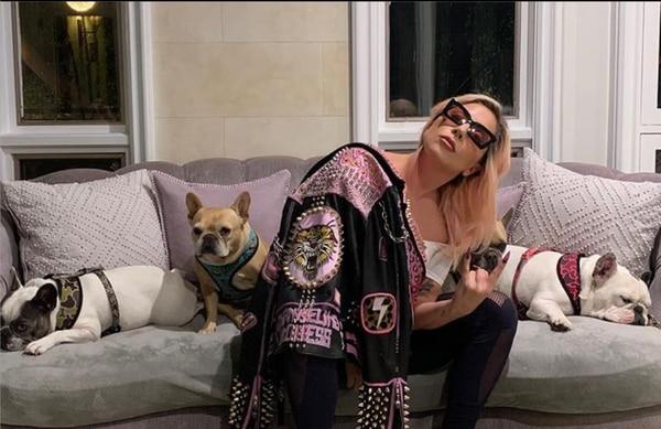 Lady Gaga y sus tres perritos. Foto: Instagram