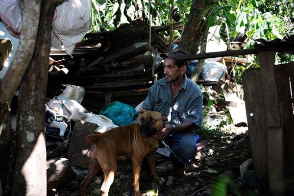Hombre 'acumulaba' perros desnutridos y en suciedad