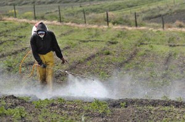 Los insumos para productos agrícolas se verán encarecidos pero el productor no podrá cobrarlos.