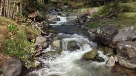 Unesco declara a Savegre como Reserva de la Biosfera