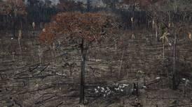 Editorial: Uso de la tierra y cambio climático