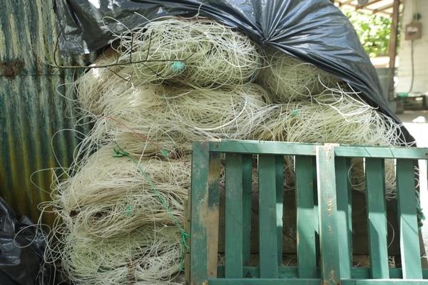 Kilómetros de línea de pesca se retiraron de la Isla del Coco. Este material fue hallado por los guardaparques durante sus patrullajes en la zona. Fotografía: John Durán