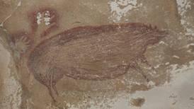 Leang Tedongnge: Estudiante descubre en Indonesia la pintura primitiva más antigua del mundo