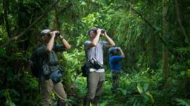 Aves son atractivo clave para la recuperación del turismo en Costa Rica