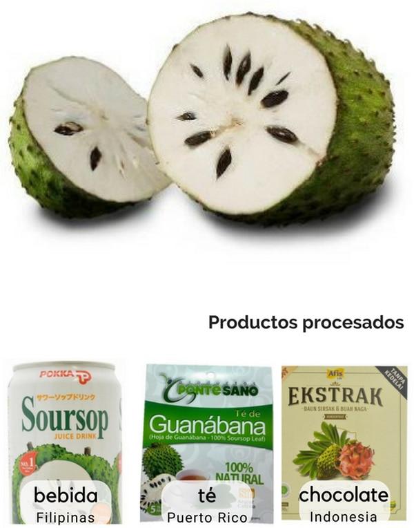 Guanábana, uno de los ocho productos agrícolas incipientes propuestos en el informe de Procomer. Imagen: Imagen: Informe de Procomer.