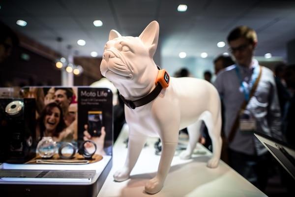 Desde un collar que sirve como un teléfono inteligente para mascotas, una tasa que cuenta calorías o un dron que saca selfies, la Feria de Electrónica de Hong Kong muestra todo tipo de inventos que aprovechan la tecnología para darle nuevas aplicaciones.