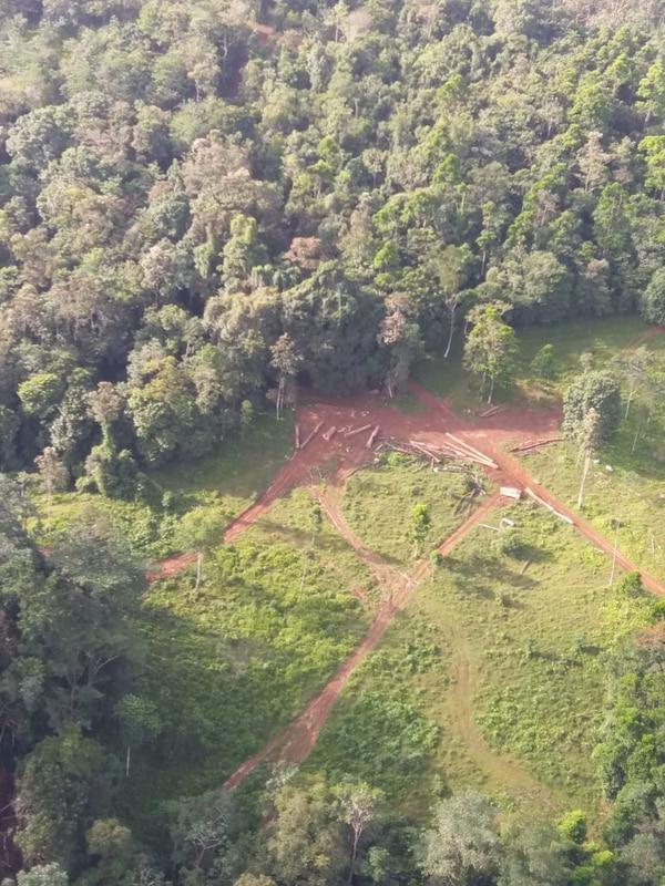 Vista de uno de los aserraderos clandestinos localizados durante el operativo y uno de los puntos donde se halló maquinaria pesada en las zonas de Bananito Norte y Sur en el cantón de Limón (Limón) / Fotografía: GOA para LN.