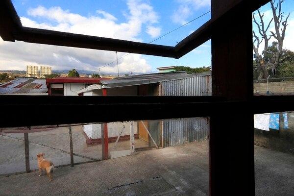 Desde mi ventana, en San Nicolás, de Taras de Cartago, a las 4:07 p. m., Nita en soledad extraña el movimiento que rutinariamente observaba antes de la cuarentena por covid-19. Foto: Rafael Pacheco