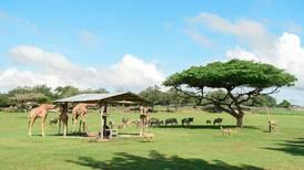Fiscalía instruyó al Minae a reforzar control sobre centros privados de vida silvestre por incumplimientos