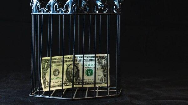 Un dólar metido en una jaula. Foto: pexels.com