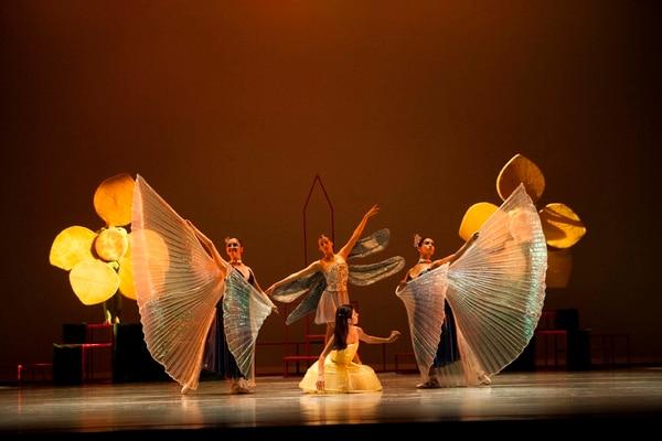 En el jardín de la Reina de Corazones, igual que en el libro de Lewis Carroll y la conocida adaptación de Walt Disney, Alicia visita a insectos y flores que bailan ballet y danza contemporánea.