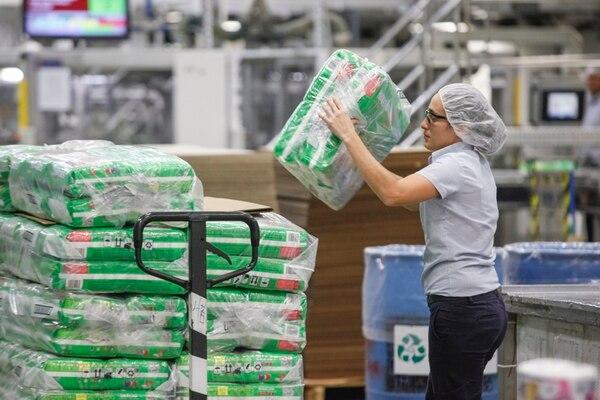 Un 36% de los 1.324 empleados directos de Kimberly Clark en Costa Rica son mujeres. Una colaboradora no identificada empacó ayer el producto en la planta de producción de Coris, en Cartago. | JORGE ARCE