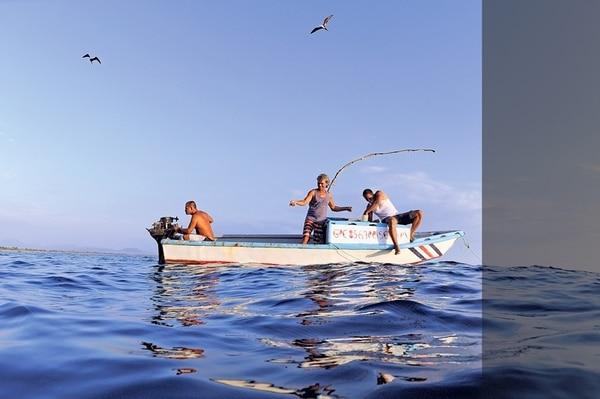 El blanqueamiento de los corales en el Caribe, debido a la temperatura del mar, dejará sin hábitat a especies de interés para la pesca. Asimismo, las inundaciones y las sequías traerán consigo pérdida de cosechas.   LUIS NAVARRO