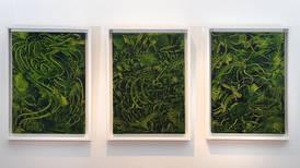 'Territorios': visiones del adentro y del afuera en el Museo de Arte Costarricense
