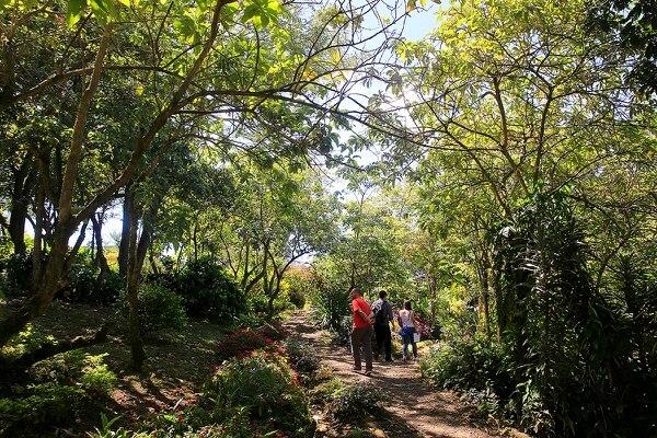 El parque de la urbanización El Prado es uno de los proyectos modelo en el cantón de Curridabat, pues ofrece espacios que intentan acercar la naturaleza a los vecinos. Los senderos son prueba de ello.