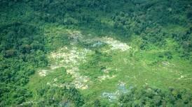 Acción humana amenaza a un tercio de las áreas protegidas del mundo