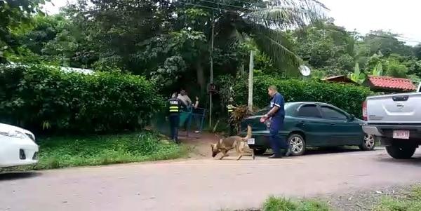 La Policía Judicial utilizó perros adiestrados en la revisión que hicieron este martes de las dos viviendas ubicadas en Santa Rita Nueva de Orotina, donde asesinaron a dos adultos y una menor. Fotos: Alejandra Portuguez