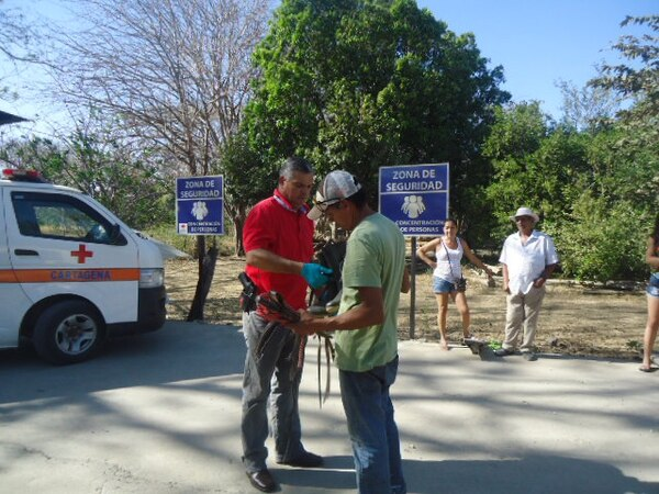 Los socorristas intentaron salvarle la vida a Rodolfo Bustos Contreras, sin embargo la herida que presentaba en su cabeza luego de caer de un caballo era grave y le ocasionó la muerte.
