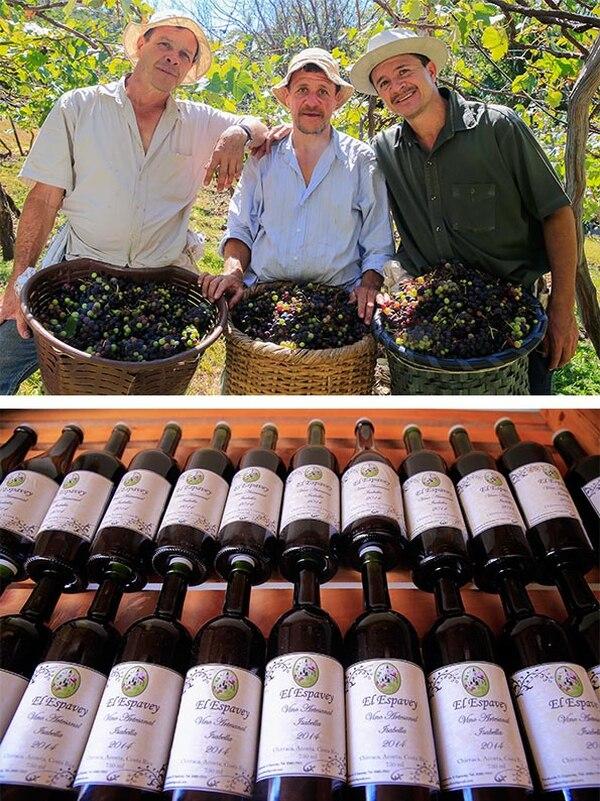 Este vino es, de acuerdo con Iván, el mejor vino artesanal y biodinámico, o sea, trabajado con las fases de la luna y a lo cual se le atribuyen propiedades altamente afrodisiacas.