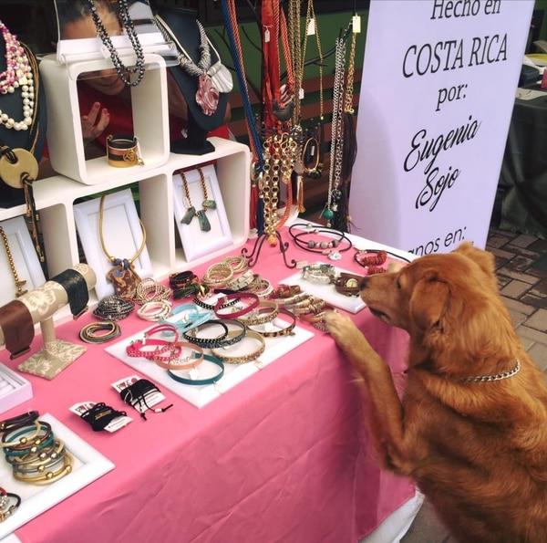 Según un estudio, los artículos para mascotas ganan mercado no solo en Costa Rica sino en Norteamérica, especialmente en segmentos especializados.