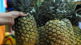 12 productos de Costa Rica esperan aval para entrar a más países