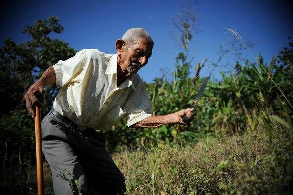 En la península de Nicoya está la zona de mayor longevidad en Costa Rica, donde se llega a los cien años con salud. En 2014, José María Guevara tenía 104 años y todavía atendía sus cultivos. | ARCHIVO