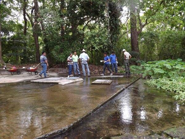 Expertos analizan una fuente de agua en Bagaces. El área de protección del manantial debe ser de 100 metros a la redonda. | ARCHIVO