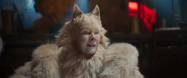 Los gatos no tienen la culpa de un filme tan deficiente. Universal Pictures