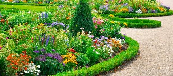 Ina y parque la libertad impartir n el primer t cnico en for Programa diseno de jardines