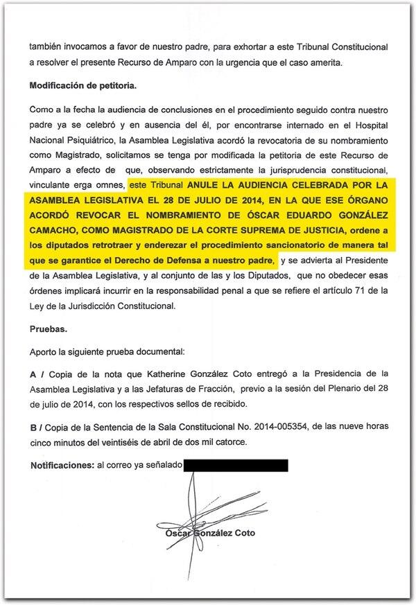 Óscar González, hijo del magistrado, amplió el recurso de amparo N.° 14-11839-0007-CO, que presentó el domingo a favor de su padre. | REPRODUCCIÓN.