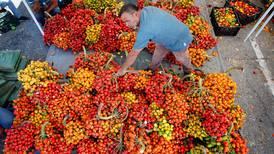 Agro es el sector más abierto a contratar trabajadores sin experiencia