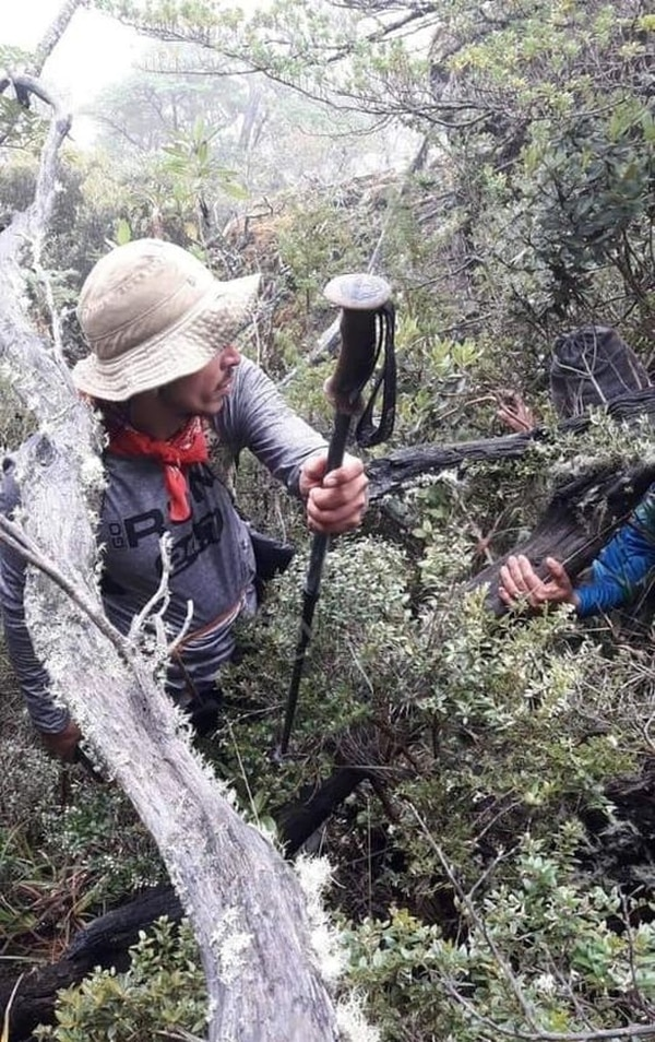 Este bastón de montañismo, hallado cerca de Ventisqueros, es el que usaba Marialis Blanco cuando desapareció. Fue hallado poco después de las 9 a. m. y es lo único encontrado hasta ahora. Foto: suministrada por Mario Cordero.
