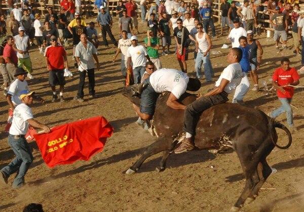 Lo que para unos es diversión, para veterinarios y asociaciones de protección animal es violencia contra el toro. | ARCHIVO